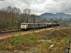 289 (firedmanager) Tags: train tren locomotive mitsubishi locomotora renfe trena 289 railtransport renfemercancías