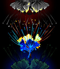 Flowers and Fireworks (chazart7777) Tags: flowers blue red flower photomanipulation fireworks gimp imagemanipulation abastract