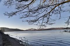 Loch Lomond at dusk (Anne Young2014) Tags: scotland dusk lochlomond visitscotland