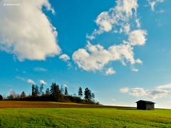 Just before the Spring (GerWi) Tags: sky nature landscape spring outdoor natur wiese himmel landschaft frühling