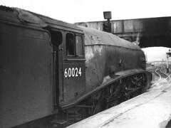 Gresley A4 60024 Kingfisher, Perth Station (rac819) Tags: steam railways britishrailways steamlocomotives uksteam brsteam