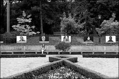 . (Out to Lunch) Tags: park summer blackandwhite monochrome digital canon eos photos exhibition chisinau moldova 2010 282470 5dmii