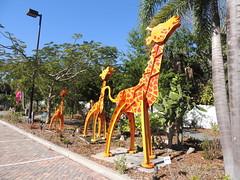 DSCN8469 (Dale_Wiley) Tags: art metal statues giraffe horseshoes