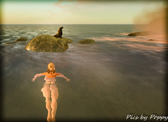 Whimsy-21 (Popis_second_life) Tags: whimsy secondlife