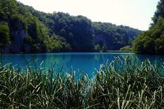 Parc nacional de Plitvice (6) / Lika / Croacia (Ull mgic) Tags: naturaleza nature water landscape lago agua fuji croatia natura paisaje lika arbres bosque aigua croacia reflejos llac bosc plitvice paisatge reflexes plitvika xt1 parcnacional