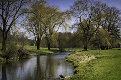 041616_10 (jenbargerphotography) Tags: pennsylvania streams willowtrees
