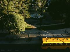 Fim de tarde (Praa Santos Andrade) (Rgis Cardoso) Tags: sunset pordosol bus green sol nature yellow afternoon natureza amarelo curitiba santos praa nibus por tarde andrade
