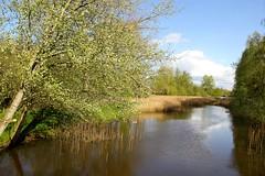 """De kleine Dommel"" Geldrop (ToJoLa) Tags: canon spring lente landschap voorjaar 2016 geldrop canoneos60d dekleinedommel"