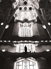 Chiaroscuro (Gabriel M.A.) Tags: barcelona bw silhouette statue sepia columns olympus cropped catalunya 24mm 12mm sagradafamilia pillars pointing toned zuiko f28 omd 1240 em5 saintjordi gloryfaade olympusmzuikopro1240mmf28
