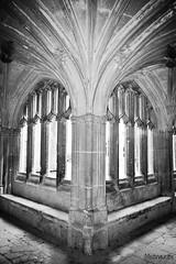 Cloisters (mistinguette.mistinguette) Tags: window monochrome abbey architecture buildings arches historic column pillars nationaltrust blackanwhite