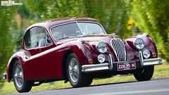 Jaguar XK140  | RACV & AOMC Classic Showcase & Japanese Motoring Show 2016 | Flemington Racecourse | Melbourne | Australia (Ben Molloy Automotive Photography) Tags: show classic japanese australia melbourne jaguar showcase racecourse flemington | 140 motoring xk 2016 racv xk140 aomc