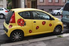 119-366, Wenn das kein Glck bringt ... (julia_HalleFotoFan) Tags: auto gelb marienkfer hallesaale