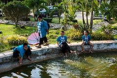 Boys on the Pond 6043 (Ursula in Aus - Away) Tags: thailand thep maehongson