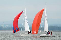 _DSF4611 (Frank Reger) Tags: regatta u20 dsc segeln segelboot diessen