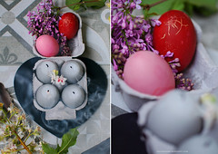 Happy Easter (Yulchonok) Tags: holiday easter spring diptych egg