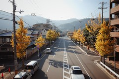 Warm Sunshine In Autumn (Gai) Tags: street bridge autumn people car japan kyoto pedestrian arashiyama    saga   enlight
