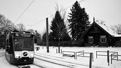 tram at alexandrowka (micagoto) Tags: siemens tram vip potsdam 413 96 combino alexandrowka