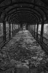 tren olvidado (JavierGil.) Tags: blackandwhite españa blancoynegro tren spain sanpedro marbella abandono sanpedroalcantara