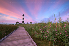 North Carolina Bodie Island Lighthouse OBX (Mark VanDyke Photography) Tags: morning pink flowers summer lighthouse sunrise outside outdoors photography coast early nc northcarolina historic coastal carolina mallow boardwalk beacon landsacpe bodieislandlighthouse capehatterasnationalseashore seashoremallow woodenboardwalk