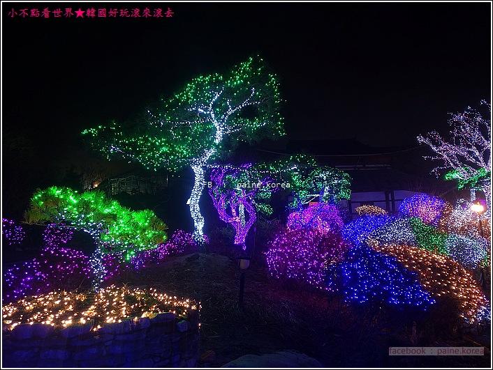 晨靜樹木園 五色星光庭園展 (3).JPG