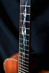 Custom Handmade Grand Auditorium Acoustic Guitar with Venetian Cutaway (elijahjewelguitars) Tags: music guitar handmade guitars acoustic custom musicinstrument acousticguitar stringedinstrument acousticguitars grandauditorium customhandmadegrandauditoriumacousticguitarwithvenetiancutaway grandauditoriumguitar grandauditoriumguitars