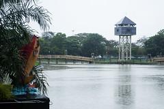 Fish statue (rain) (jethro_my) Tags: fish tower clock rain miri sarawak taman bulatan