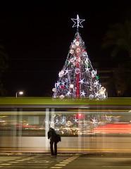 tranva navideo (jorgemaktub) Tags: city nightphotography night lights navidad noche spain tram ciudad murcia nocturna tranvia citynights fotografianocturna lucesnavideas