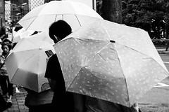 Jose Lopes Amaral Street Photography (Jose Lopes Amaral) Tags: life china bw hongkong asia noir humanity taiwan streetphotography documentary social rua luxembourg asianfood et streetfood portuguese blanc macao asianculture photograpiederue joselopesamaram
