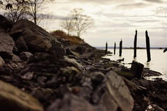 A Rocky Shore With A Pier Long Lost (MartMart1413) Tags: rock bokeh poles sea nature sky pier rundown poloneses 散景 波蘭 自然 자연 natura 桟橋 pôles 碼頭 poli 性质 mare cielo 실행 ダウンを実行します。 polen himmel muelle rocha natur 바위 跑下 couler 스카이 postesde mar céu 岩石 폴란드 부두 波兰 mer malandato 바다 natureza 性質 ボケ味 ロック 天空 bajar cais correrparabaixo roccia heruntergekommen naturaleza 極 码头 海