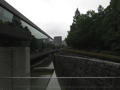 IMG_8645 (Momo1435) Tags: japan tokyo kotoku