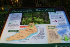 IMG_7377 (SweetMeow) Tags: forest shadows southcarolina boardwalk marsh conservancy hiltonheadplantation whoopingcranepondconservancy