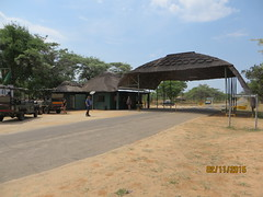 Zimbabwe (193) (Absolute Africa 17/09/2015 Overlanding Tour) Tags: africa2015