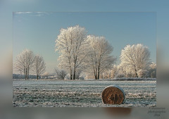 Eiszeit_Ice Age (b.stanni) Tags: schnee winter light snow germany landscape deutschland licht outdoor himmel eis landschaft mv müritz