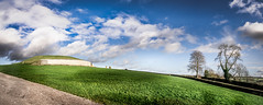Newgrange - Co. Meath, Ireland - Travel photography (Giuseppe Milo (www.pixael.com)) Tags: travel trees ireland light sky panorama tree green history megalithic nature grass weather clouds landscape geotagged photography photo europe sony fullframe ie onsale ultrawide a7 newgrange meath sonya7