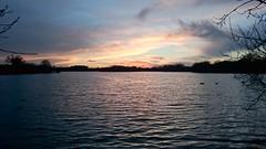 DSC_0023 (jhoneyball) Tags: sunset 2016 dintonpastures z3c