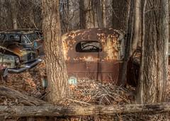 DSC08575.ARW-01 (juice95m3) Tags: abandoned rust vintagecar automobile junkyard oldcars classiccars