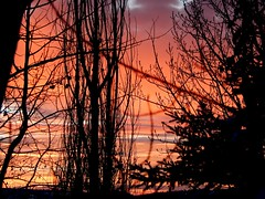 Rainbow-Colored Sunset (Kelly.Belle1) Tags: sunset red orange silhouette yellow clouds landscape purple 1001nights 1001nightsmagiccity