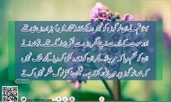Surah Al-Baqrah Verse No 243 (faizme28) Tags: alquran albaqrah