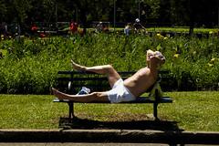 (Selva SP) Tags: parque verde sol bronze sopaulo banco ibirapuera cor corrida descanso senhor parqueibirapuera treino semcamisa gustavomorita selvasp