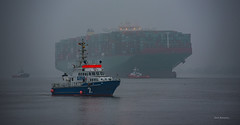 High & Dry (garrelf) Tags: china river ship accident hamburg line container shipping elbe stade wrack altesland grounding polizeiboot stranding bergung cslindianocean