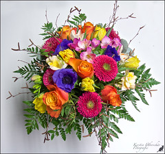 (#2.890) A bouquet of colorful flowers. [Explore] (unicorn 81) Tags: birthday flowers plant beautiful fleurs colorful blossoms pflanze blumen geburtstag explore surprise bouquet congratulations blume bouquetofflowers birthdaypresent straus colorfully explorephoto geburtstagsblumen