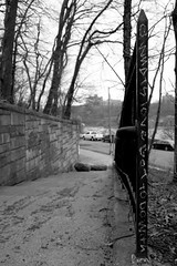 Q. What's Love got to Do With...? (R. Millz) Tags: park nyc newyorkcity trees cars love vertical words song bronx steps blackandwhitephotography writings tinaturner sonya6000