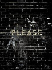 Glebe, Sydney (Foraggio Photographic) Tags: street wall words graphic please au bricks australia newsouthwales glebe brickwork grungy writingonthewall