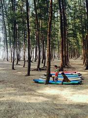 Village kids  #kid #kids #boy #boys #girl #girls #surferboy #surfergirl #surfingdaily #surfingworld #surferworld #surfdistrict #coxsbazar #bangladesh #surfingphotography #surfingbangladesh #lovesurfing (jowel juboraj) Tags: girls boy boys girl kids kid bangladesh surfergirl coxsbazar surferboy surfingworld surfingphotography surfingbangladesh surfingdaily lovesurfing surferworld surfdistrict