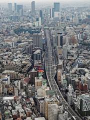 2016-02-06 15.50.32 (pang yu liu) Tags: travel japan tokyo daily 02   feb    2016  52f