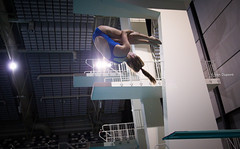 PSV Master Diving Cup 2016, Eindhoven, The Netherlands (monsieur I) Tags: people water sport canon plongeon eos thenetherlands competition diving eindhoven swimmingpool masters championships intheair acrobatic acrobaticdiving monsieuri
