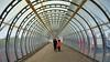 Tunnel vision (edk7) Tags: uk england building london architecture vanishingpoint poplar engineering structure canarywharf lattice pedestrianbridge 2015 westindiaquay poplardlrstation aspenway londonboroughoftowerhamlets nikonafnikkor28105mm13545d edk7 nikond610 poplardocklandslightrailwaystation