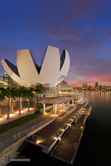 Art Science Museum (syphrix photography) Tags: city travel bridge pink blue sunset sky urban orange reflection tourism water skyline museum modern clouds skyscraper marina canon buildings river shopping landscape photography lights hotel evening harbor boat photo office singapore colorful asia downtown glow cityscape waterfront view skyscrapers dusk district south central scenic picture bank landmark scene east financialdistrict business entertainment esplanade promenade rides cbd hotels sight financial metropolitan condominiums mbs 2013 singaporeflyer marinabaysands syphrix
