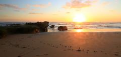 Suncatcher (alideniese) Tags: ocean sunset sea sky sun seaweed reflection beach water clouds landscape outdoors evening sand rocks sundown dusk shoreline australia melbourne victoria panoramic coastal shore morningtonpeninsula waterscape gunnamatta scenicsnotjustlandscapes
