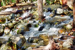 Bridalveil Falls. Yosemite California (Travel to Eat) Tags: california waterfall nationalpark scenery yosemite bridalveilfalls